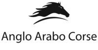 Anglo Arabo Corse